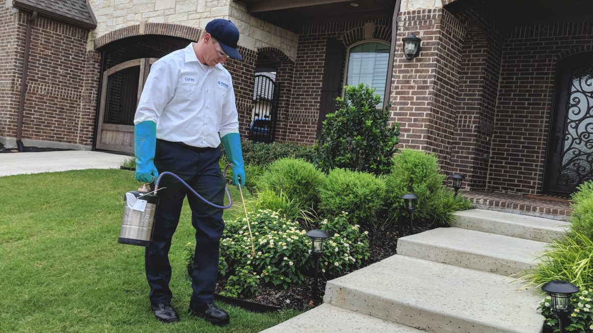 Benefits of Hiring Pest Control Service