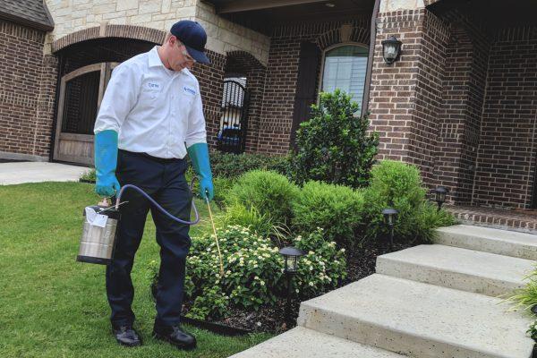 Benefits of Hiring Pest Control Service