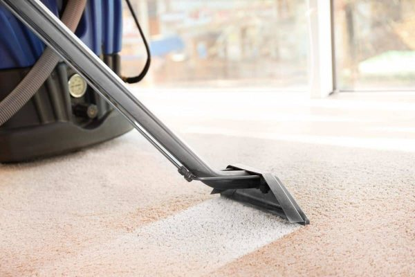 Prevent Pest Problems With Carpet Cleaning